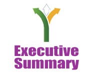 Executive Summary Budget 2013
